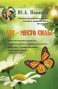 Юрий Новиков -Лес – место силы