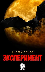 Андрей Сокол -Эксперимент