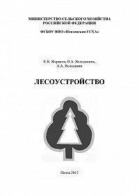Алексей Володькин -Лесоустройство