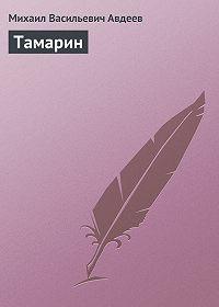 Михаил Васильевич Авдеев -Тамарин