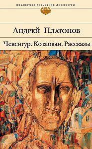 Андрей Платонов - Чевенгур