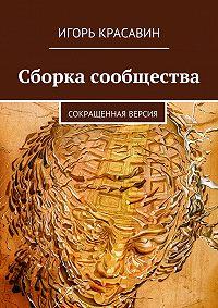 Игорь Красавин -Сборка сообщества