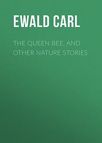 Carl Ewald -The Queen Bee, and Other Nature Stories