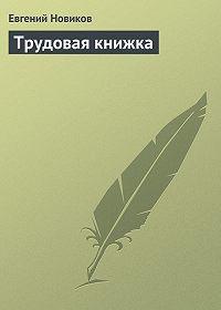 Евгений Новиков -Трудовая книжка