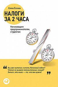 Елена Ёлгина -Налоги за два часа