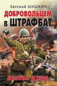 Евгений Шишкин -Добровольцем в штрафбат. Бесова душа