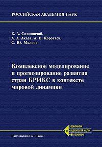 С. Малков -Комплексное моделирование и прогнозирование развития стран БРИКС в контексте мировой динамики
