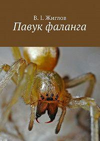 В. Жиглов - Павук фаланга