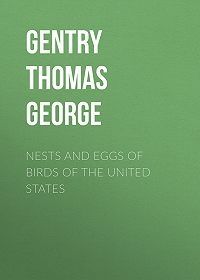 Thomas Gentry -Nests and Eggs of Birds of The United States