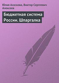 Юлия Асоскова -Бюджетная система России. Шпаргалка