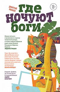 Дмитрий Иванов - Где ночуют боги