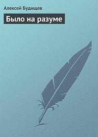 Алексей Будищев - Было на разуме