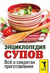 С. П. Кашин - Энциклопедия супов. Всё о секретах приготовления