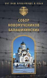 игумен Дамаскин (Орловский) -Собор новомучеников Балашихинских