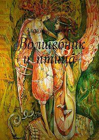 Александра Фокина -Волшебник иптица