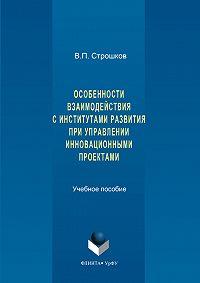 Валерий Строшков -Особенности взаимодействия с институтами развития при управлении инновационными проектами