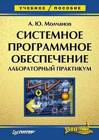 Алексей Молчанов - Системное программное обеспечение. Лабораторный практикум