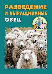Илья Мельников, Александр Ханников - Разведение и выращивание овец