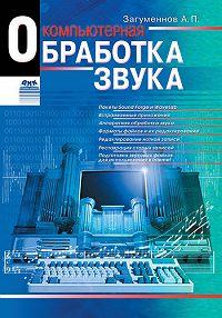 Александр Загуменнов -Компьютерная обработка звука