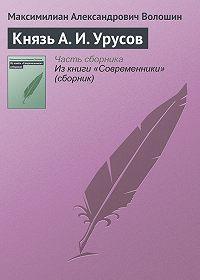 Максимилиан Александрович Волошин -Князь А.И.Урусов