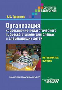 Борис Тупоногов -Организация коррекционно-педагогического процесса в школе для слепых и слабовидящих детей. Методическое пособие
