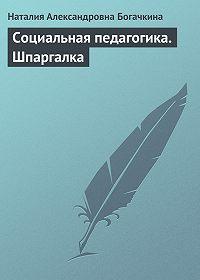 Наталия Александровна Богачкина - Социальная педагогика. Шпаргалка