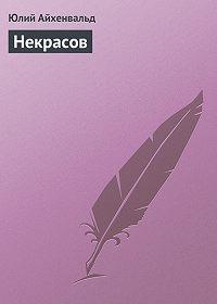 Юлий Айхенвальд -Некрасов