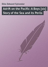 Edward Ellis -Adrift on the Pacific: A Boys [sic] Story of the Sea and its Perils