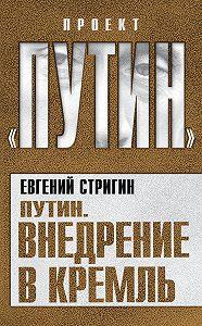 Евгений Стригин -Путин. Внедрение в Кремль