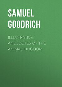 Samuel Goodrich -Illustrative Anecdotes of the Animal Kingdom
