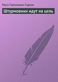 Муса Гареев - Штурмовики идут на цель