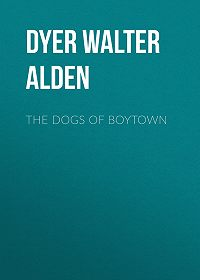 Walter Dyer -The Dogs of Boytown
