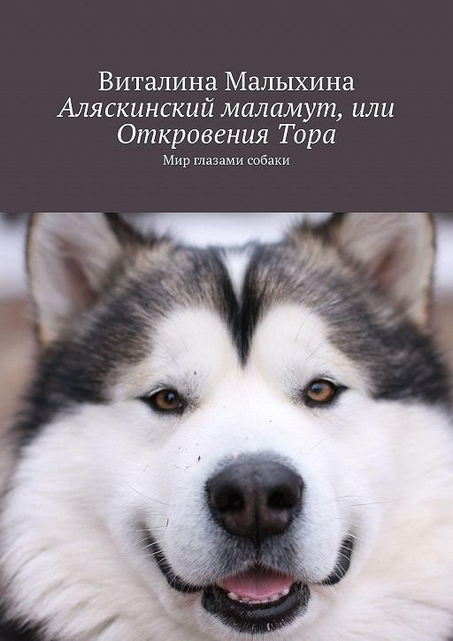 Аляскинский маламут, или ОткровенияТора. Мир глазами собаки